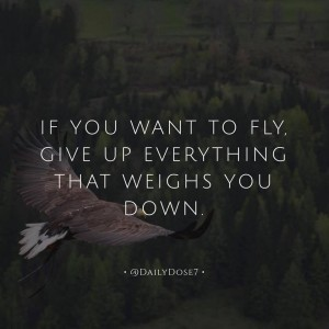 """If you want to fly, give up everything that weighs you down."""